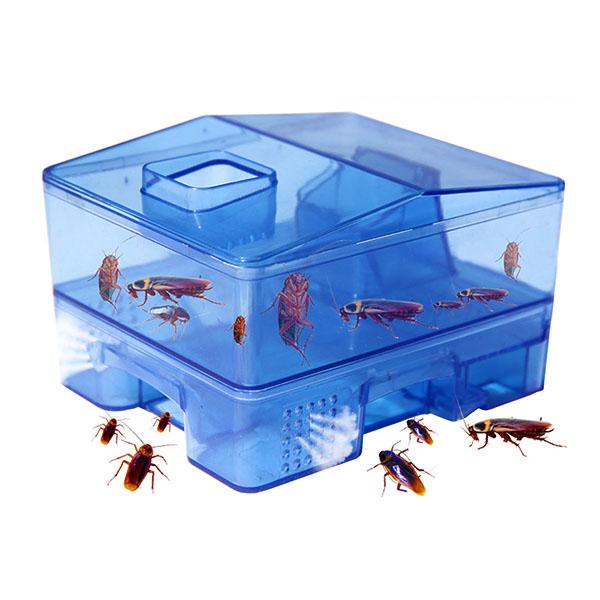 Insect Killer Trap Box in Pakistan